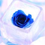 婚外恋愛成功の秘訣「温度差」